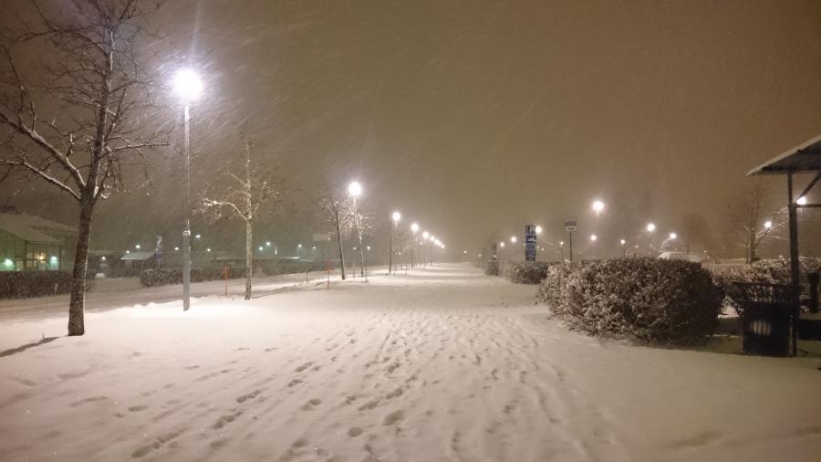 snow-snow