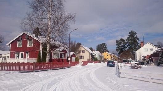 some-cute-swedish-architecture